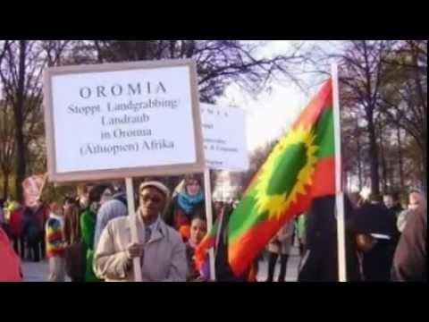 Oromo Music - Nuho Gobana - Isin Waamti Harmeen