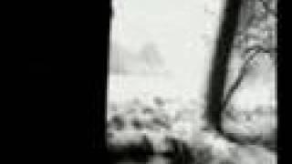 Watch 24 Grana LAttenzione video