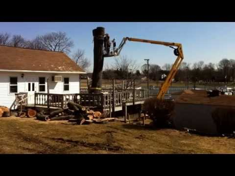 Smith Tree Service doing a big removal. (717) 866-8883