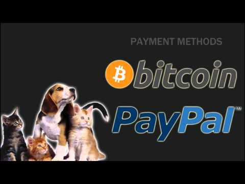 Earn money for sharing text & links (Bitcoin & Paypal)