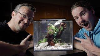 Shrimp Aquascape With George Farmer - Part 1