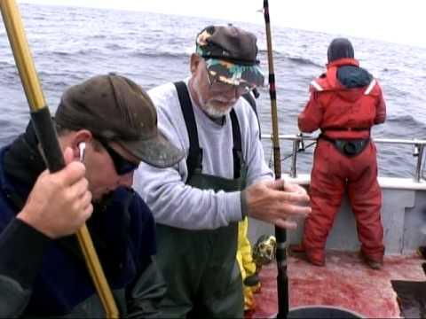 Rampage tuna fishing westport washington pt 1 youtube for Westport charters fishing report