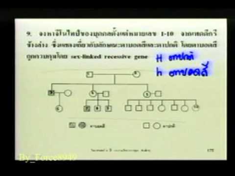 วิทยาศาสตร์ ม 3 การถ่ายทอดลักษณะพันธุกรรม สาธิต ม รามฯ Force8949 4 Of 9