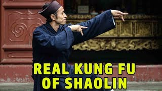 Wu Tang Collection - Real Kung Fu of Shaolin
