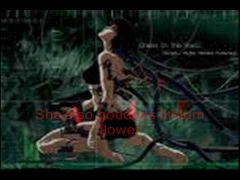 Scott Matthew - Lithium Flower (With Lyrics)