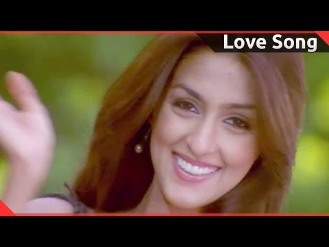 Love Song Of The Day 81 || Telugu Movies Love Video Songs Photo Image Pic