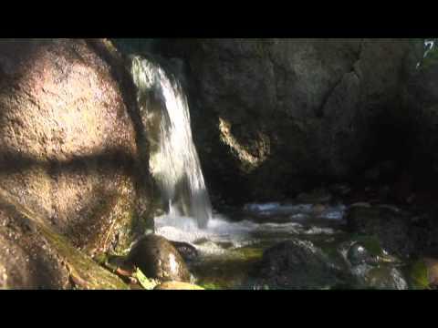 Дзен сад. Водопады.(2011)