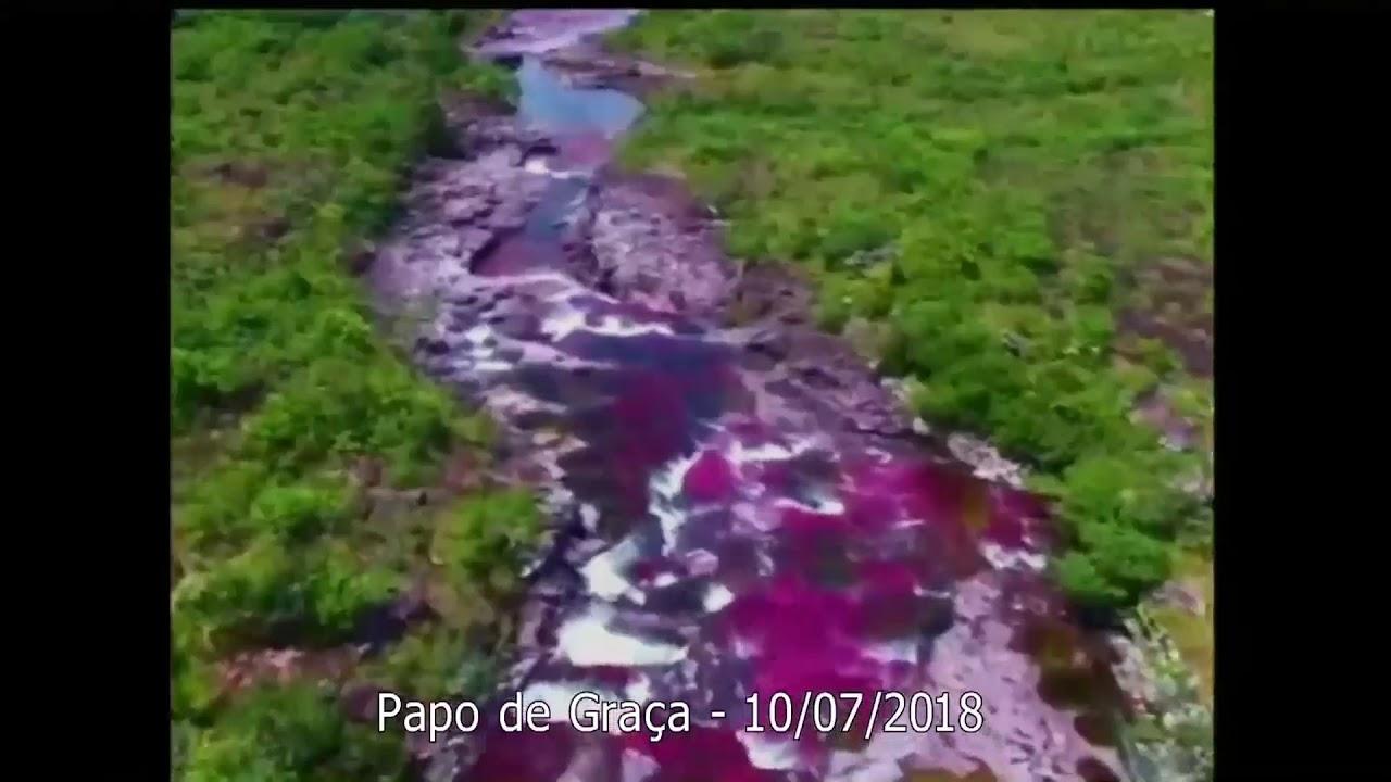 Que o Rio da Água da Vida passe colorindo nossa existência!