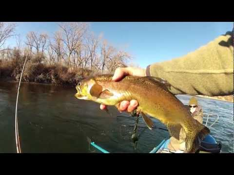Bighorn River Montana with my sexy wife Tracy. Nymphing on a warm winter day in Feb.