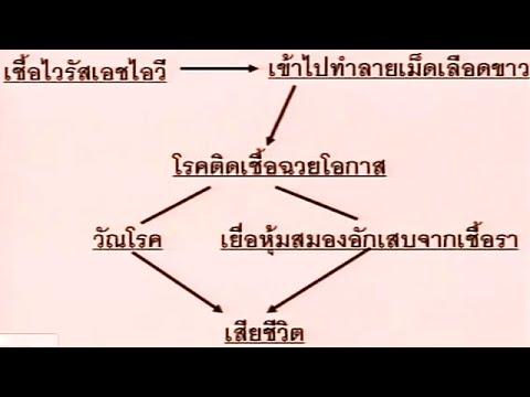 GAT เชื่อมโยง หมอแผน 4/4