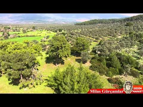Les Images Aériennes Du Village Gurcam