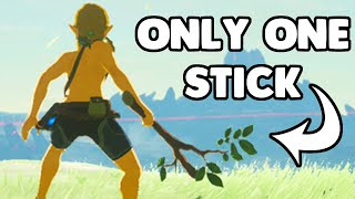 I Beat Breath of the Wild with a Single Stick