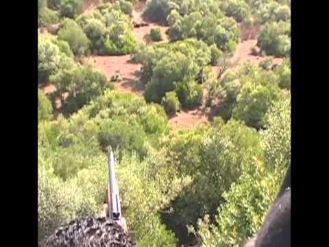 battue-aux-sangliers-au-maroc-rgion-rabat.html