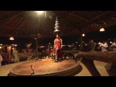 Rajasthani folk dance Amazing dance videos Amazing dancers performance...