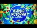 Видео Иван Хрупкин и Фиксик (Nice Little Fox X-factor).