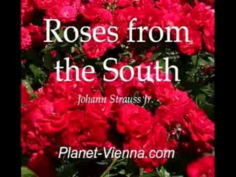 Johann Strauss - Roses from the South (Waltz, Orch.) 南国のバラ