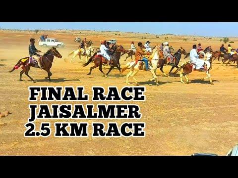 FINAL HORSE RACE JAISALMER RAJASTHAN IN DESERT FESTIVAL ,RACE DISTANCE 2.5KM MORE THAN 27 HORSES