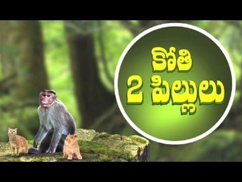 Two Cats and a Monkey Story For Kids || Telugu Moral Stories || By Dr. Chitti Vishnu Priya