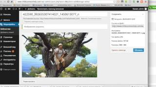 Создать сайт  Как создать сайт на wordpress с нуля  Самый крутой видео урок!