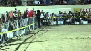 Watch El Chapo De Sinaloa Porque Eres Mi Reina video
