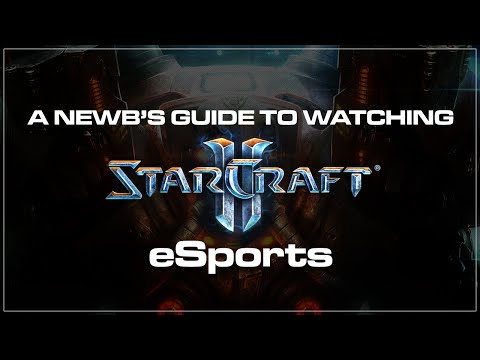 BlizzCon A newbs guide to Starcraft 2 eSports.