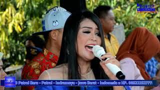 download lagu Dian Anic - Cinta Sengketa - Anica Nada 2017 gratis