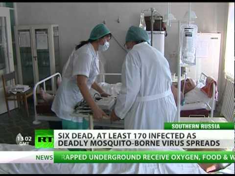 Fever Fear: Deadly West Nile virus hits Russia after record heat