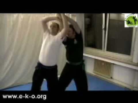 Kung Fu Fighting: Eagle Claw Qin Na/Chin Na Partner-Set (Joint Locks) Image 1