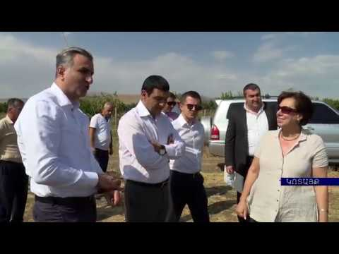 NEW STREAMS IN AGRICULTURE. ARMENIAN MINISTER OF AGRICULTURE IGNATI ARAKELYAN'S VISIT TO KOTAYK REGION