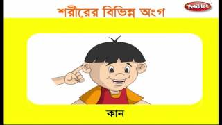 Preschool Learning Videos in Bengali | Kids Educational videos