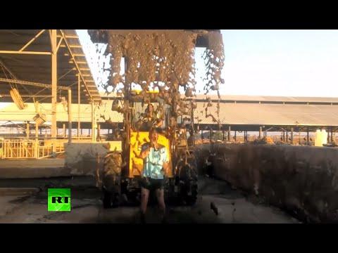 Viral: JCB sh*t-shovel drenches Israeli Gaza #RubbleBucket challenger