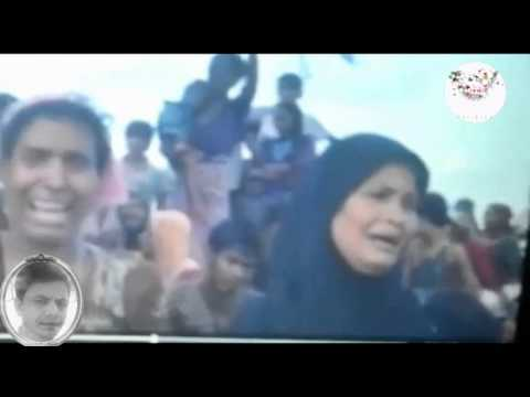 Rohingyar Halat  Malaysia & Indonesia & Thailand From Arakan Times