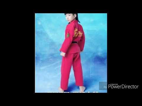 LIN QIUNAN SONG(Kung fu boys)