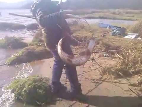 Loch lomond pike youtube for Loch lomond fishing