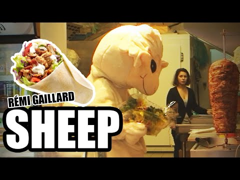 Sheep (Rémi Gaillard)