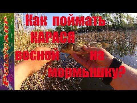 поплавочная ловля на мормышку видео