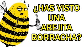 ¿HAS VISTO UNA ABEJITA BORRACHA?, ¡INCREIBLE!