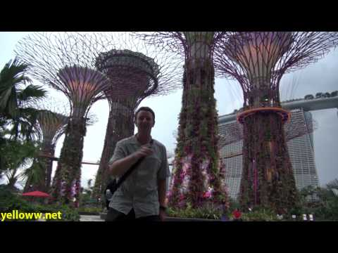 Singapore Gardens by the Bay Travel Guide