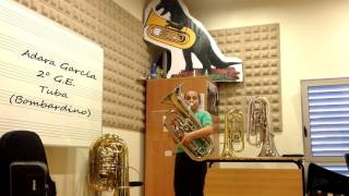 Apntate a Tuba   Cmus Profesional de Vigo