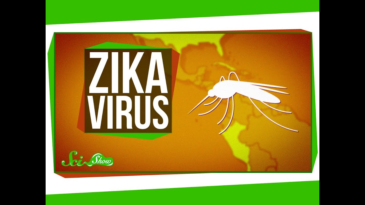 Zika Virus: What We Know (And What We Don't)