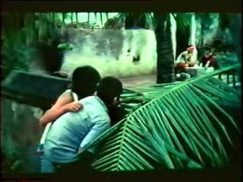Balu Mahendra - Aliyatha Kolangal Part 8