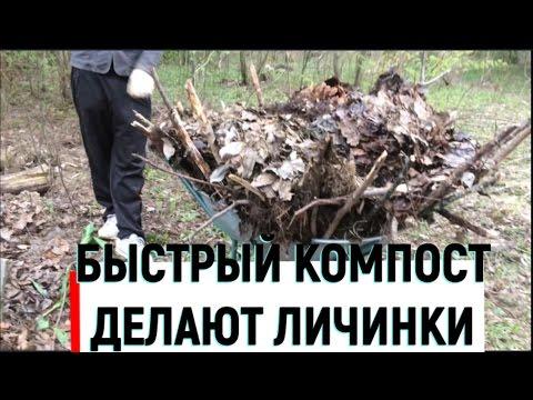 Быстрое приготовление компоста за сезон без затрат и труда