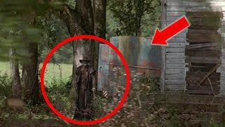 Top 8 Jeeper Creepers Caught On Camera In Real Life