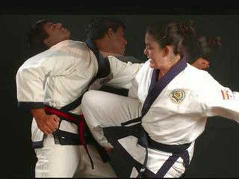 Soo Bahk Do, Moo Duk Kwan- Promo Music Videos