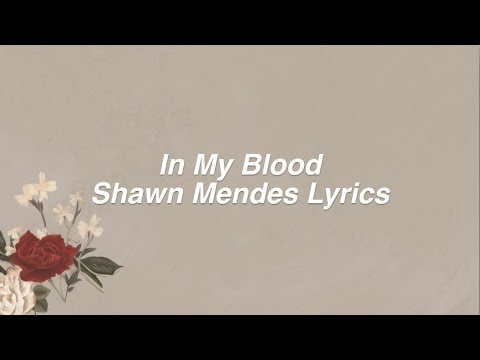 In My Blood || Shawn Mendes Lyrics