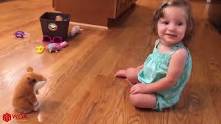 Funny Babies Talking With Toy Hamster  Funny Everyday Compilation
