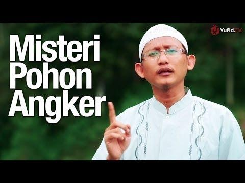 Ceramah Singkat: Misteri Pohon Angker - Ustadz Badrusalam Lc.
