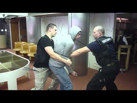 Systema  training for restraining equipment Image 1