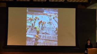 "Nicole Dosso: ""Innovation of the World Trade Center"""