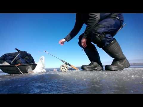 ловля подлещика в апреле на озере